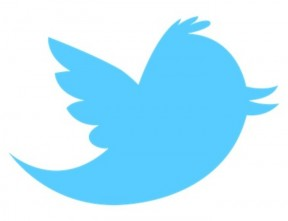 why-is-twitter-s-logo-named-after-larry-bird--b8d70319da